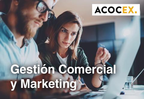 Gestión Comercial y Marketing